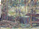 catasta di legno al brinzio 2012 acrilico su tela 70x50